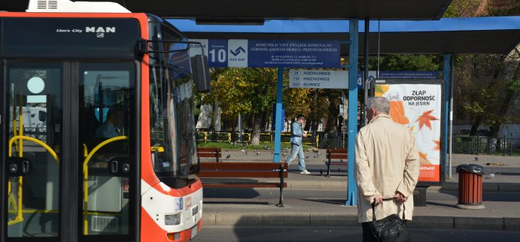 Stan wyjściowy Zarządu Transportu Metropolitalnego i jego geneza